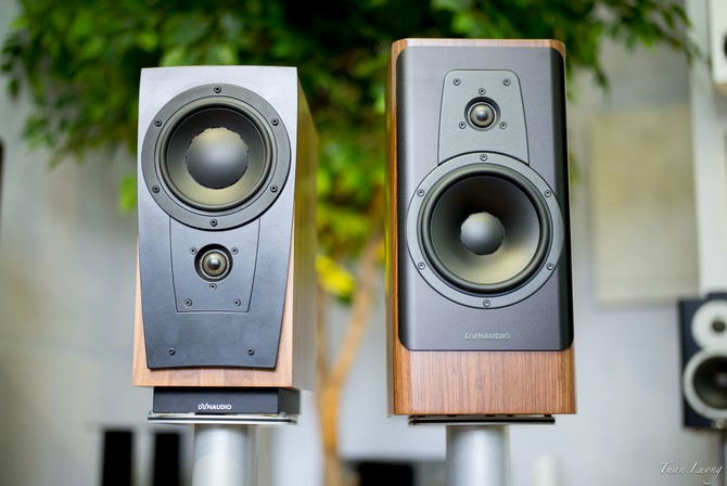 Dynaudio New Contour 20